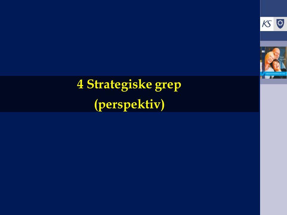 4 Strategiske grep (perspektiv)