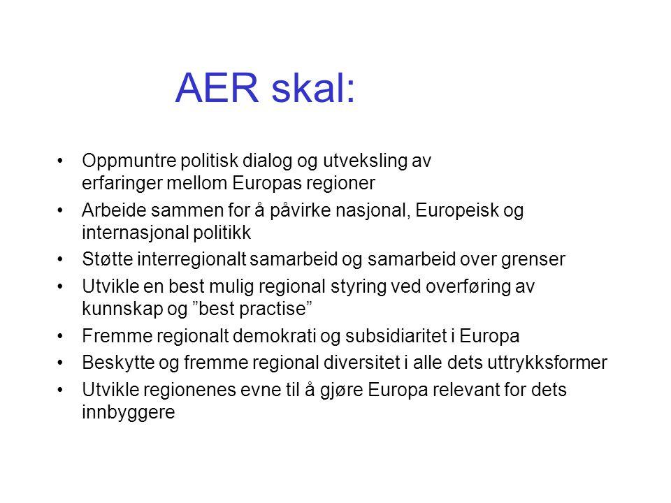 AER skal: Oppmuntre politisk dialog og utveksling av erfaringer mellom Europas regioner Arbeide sammen for å påvirke nasjonal, Europeisk og internasjonal politikk Støtte interregionalt samarbeid og samarbeid over grenser Utvikle en best mulig regional styring ved overføring av kunnskap og best practise Fremme regionalt demokrati og subsidiaritet i Europa Beskytte og fremme regional diversitet i alle dets uttrykksformer Utvikle regionenes evne til å gjøre Europa relevant for dets innbyggere