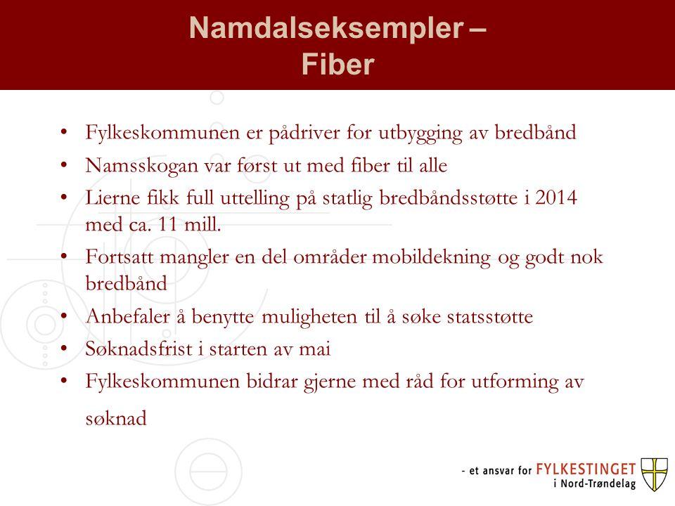Namdalseksempler – Fiber Fylkeskommunen er pådriver for utbygging av bredbånd Namsskogan var først ut med fiber til alle Lierne fikk full uttelling på statlig bredbåndsstøtte i 2014 med ca.