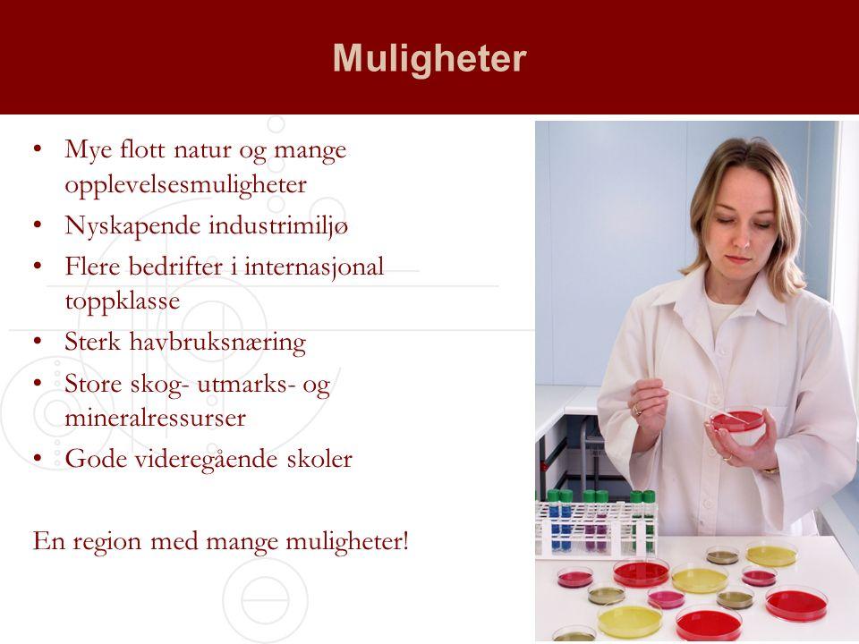 Fylkeskommunens næringsutviklerrolle Næringspolitiske strategier Tilskuddsmidler Fagkompetanse, samhandlingskompetanse og politisk påvirkningskraft
