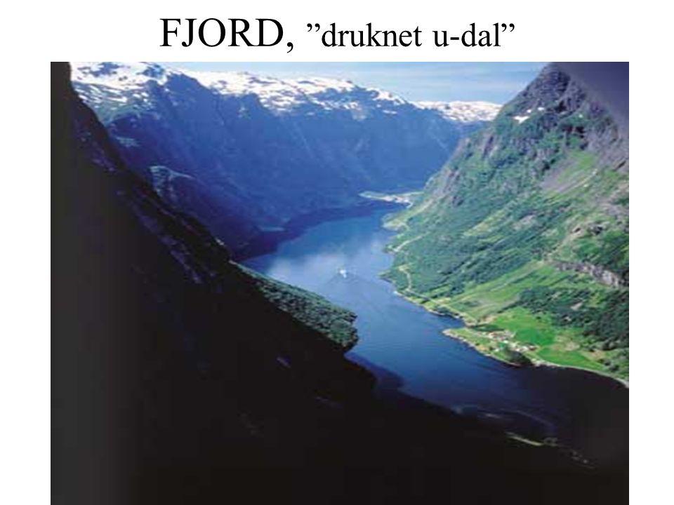 "FJORD, ""druknet u-dal"""