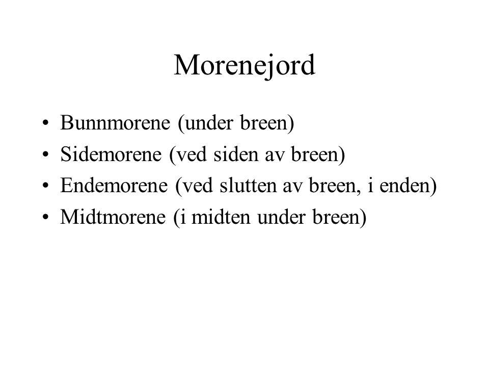 Morenejord Bunnmorene (under breen) Sidemorene (ved siden av breen) Endemorene (ved slutten av breen, i enden) Midtmorene (i midten under breen)
