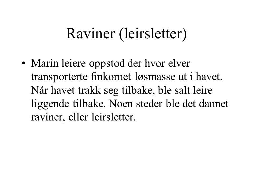 Raviner (leirsletter) Marin leiere oppstod der hvor elver transporterte finkornet løsmasse ut i havet. Når havet trakk seg tilbake, ble salt leire lig