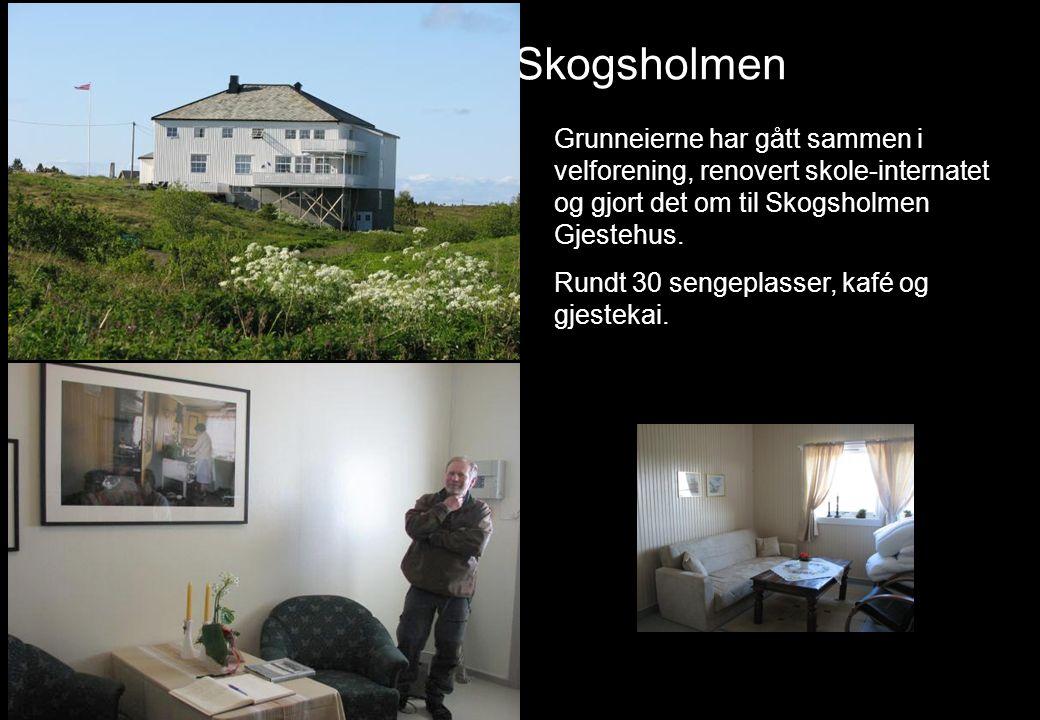 Skogsholmen Grunneierne har gått sammen i velforening, renovert skole-internatet og gjort det om til Skogsholmen Gjestehus. Rundt 30 sengeplasser, kaf
