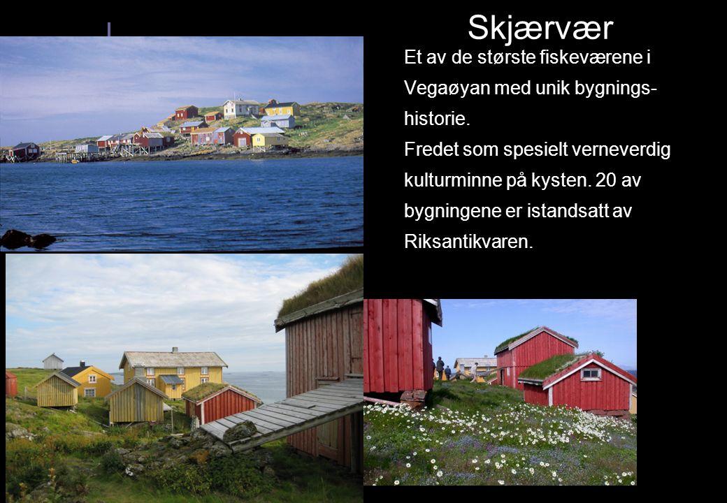 Et av de største fiskeværene i Vegaøyan med unik bygnings- historie. Fredet som spesielt verneverdig kulturminne på kysten. 20 av bygningene er istand