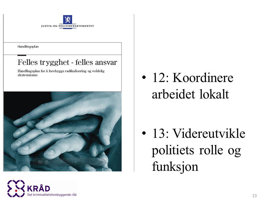 12: Koordinere arbeidet lokalt 13: Videreutvikle politiets rolle og funksjon 13