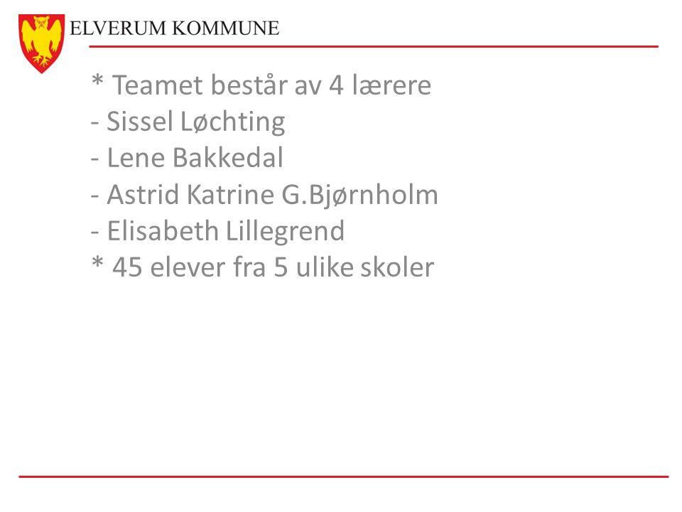 * Teamet består av 4 lærere - Sissel Løchting - Lene Bakkedal - Astrid Katrine G.Bjørnholm - Elisabeth Lillegrend * 45 elever fra 5 ulike skoler