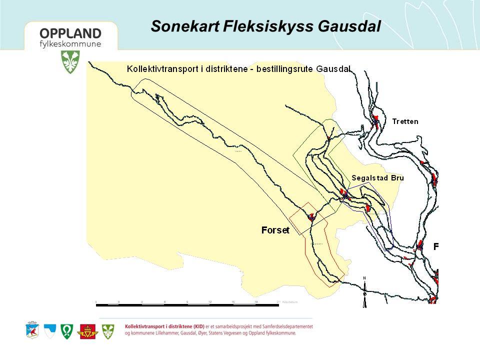 Sonekart Fleksiskyss Gausdal