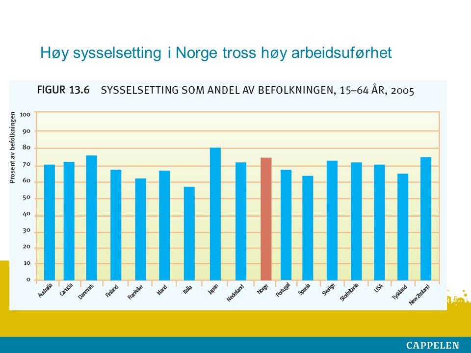 Høy sysselsetting i Norge tross høy arbeidsuførhet