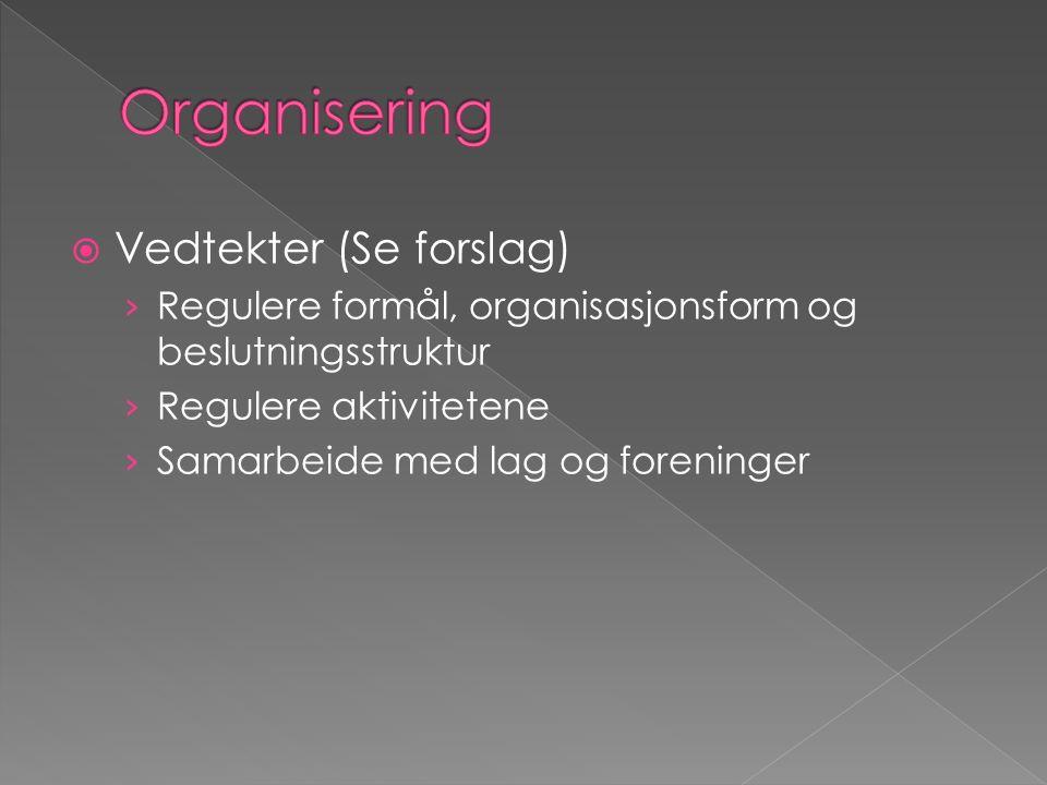  Vedtekter (Se forslag) › Regulere formål, organisasjonsform og beslutningsstruktur › Regulere aktivitetene › Samarbeide med lag og foreninger
