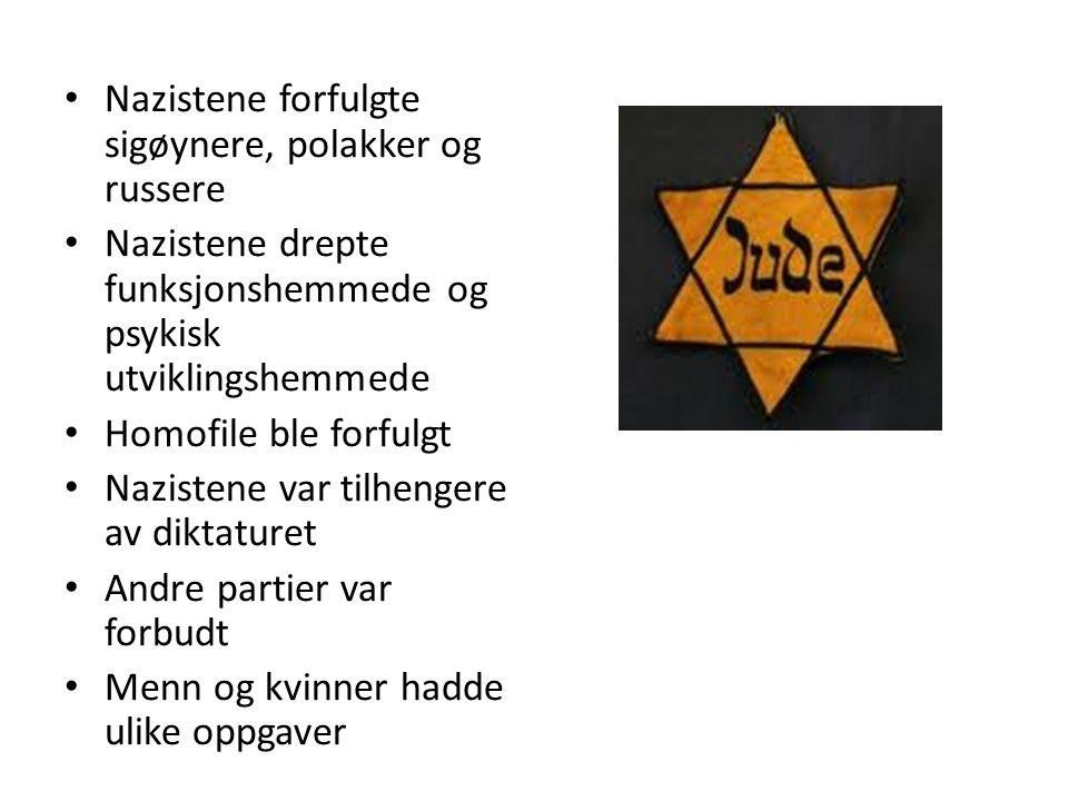 Nazistene forfulgte sigøynere, polakker og russere Nazistene drepte funksjonshemmede og psykisk utviklingshemmede Homofile ble forfulgt Nazistene var tilhengere av diktaturet Andre partier var forbudt Menn og kvinner hadde ulike oppgaver