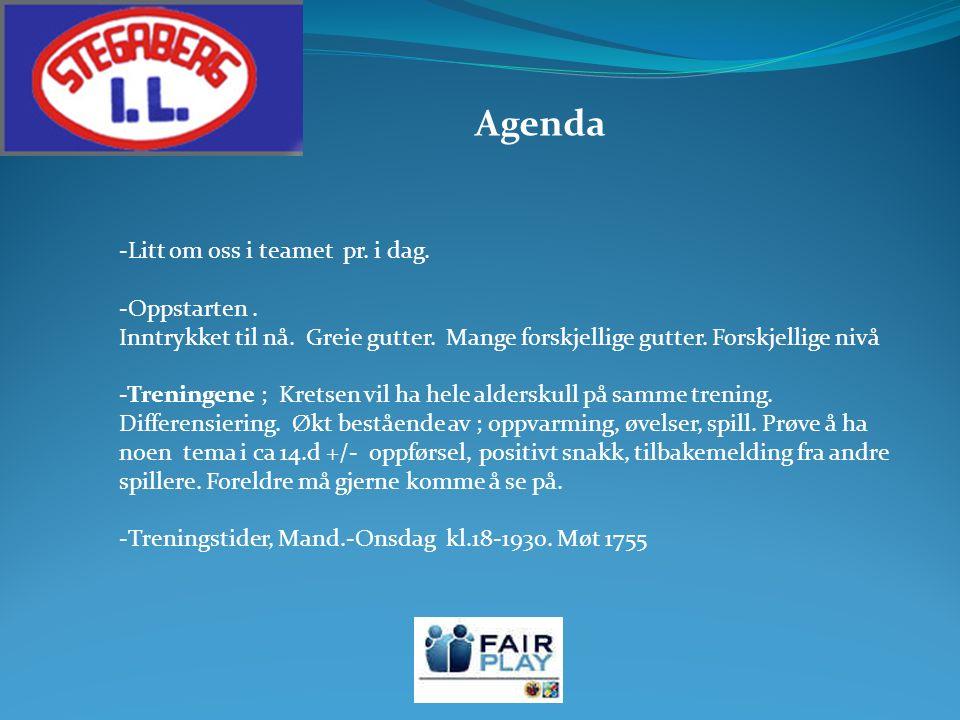 Agenda -Litt om oss i teamet pr. i dag. -Oppstarten.