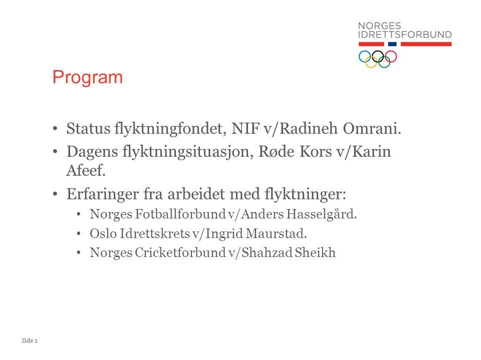 Side 2 Status flyktningfondet, NIF v/Radineh Omrani.