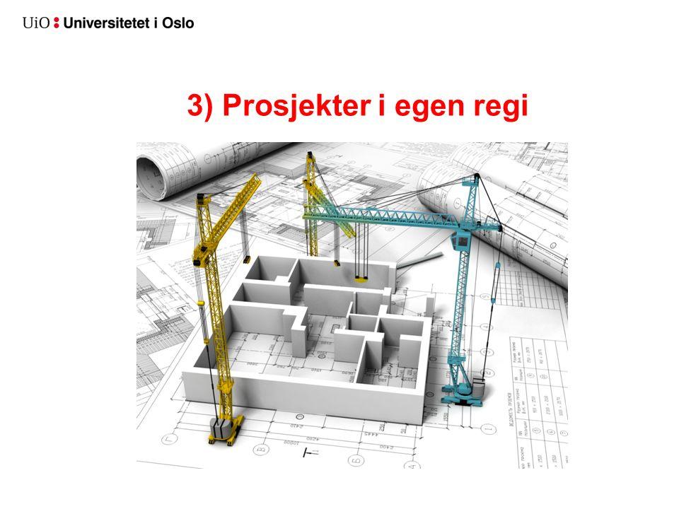 3) Prosjekter i egen regi