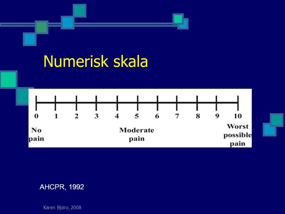 Karen Bjøro, 2008 Numerisk skala AHCPR, 1992
