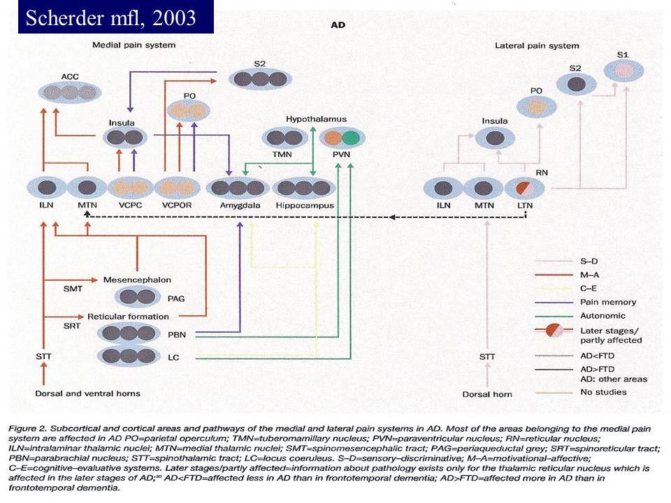 Scherder mfl., 2003 Scherder mfl, 2003