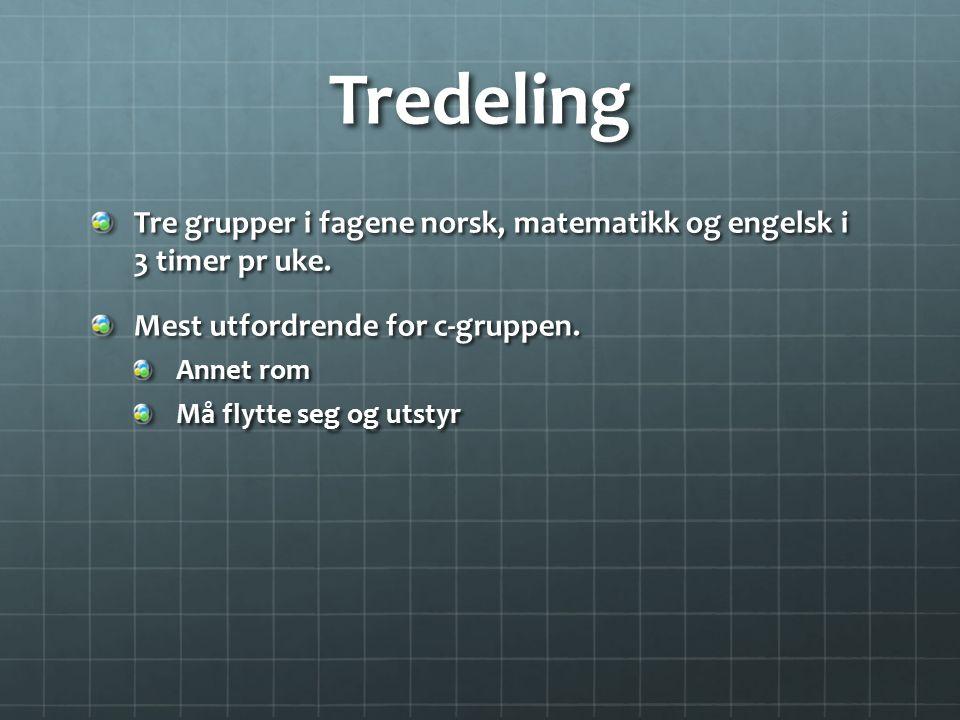 Tredeling Tre grupper i fagene norsk, matematikk og engelsk i 3 timer pr uke. Mest utfordrende for c-gruppen. Annet rom Må flytte seg og utstyr