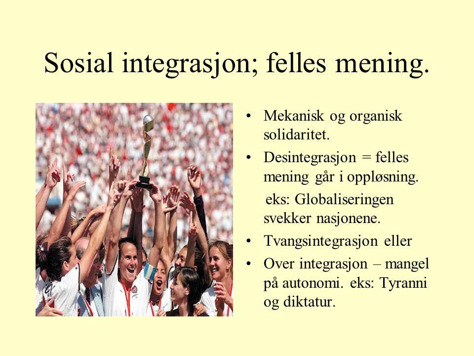 Sosial integrasjon; felles mening. Mekanisk og organisk solidaritet.