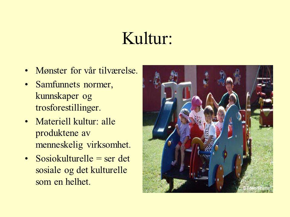 Kultur: Mønster for vår tilværelse. Samfunnets normer, kunnskaper og trosforestillinger.