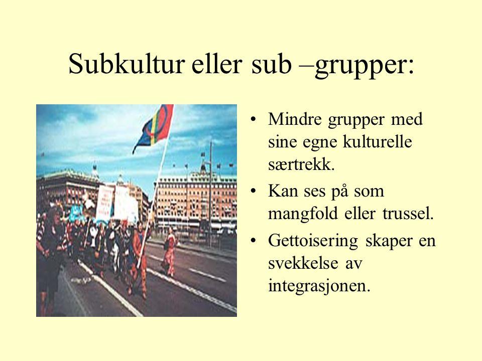 Subkultur eller sub –grupper: Mindre grupper med sine egne kulturelle særtrekk.