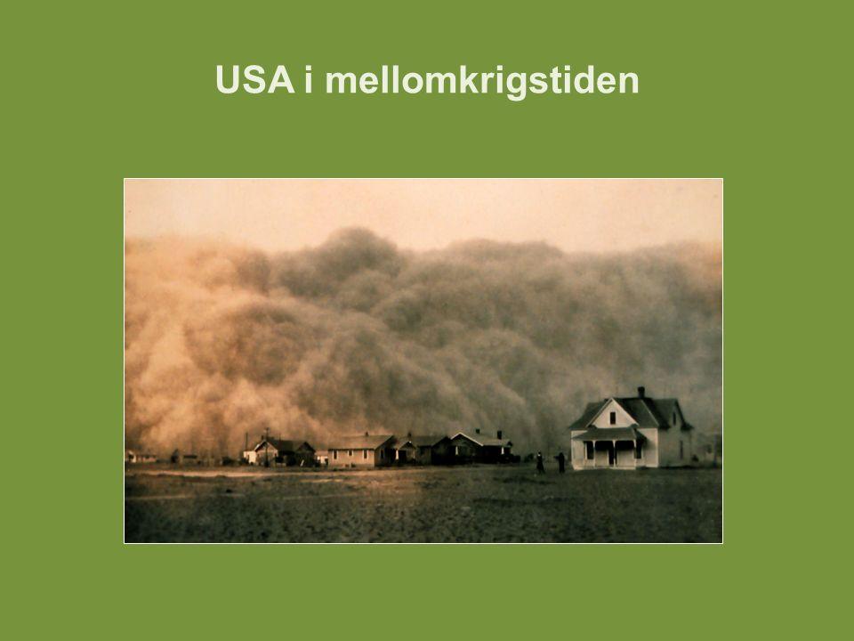 USA i mellomkrigstiden Enkelte hevdet at New Deal reddet kapitalismen fra en krise den selv hadde skapt.