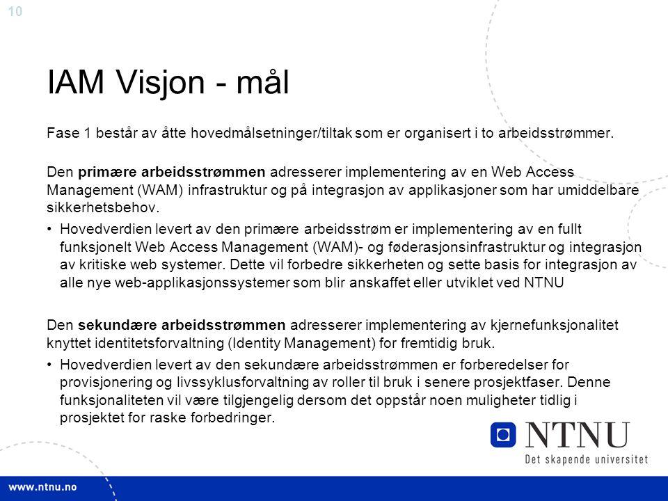 10 IAM Visjon - mål Fase 1 består av åtte hovedmålsetninger/tiltak som er organisert i to arbeidsstrømmer. Den primære arbeidsstrømmen adresserer impl