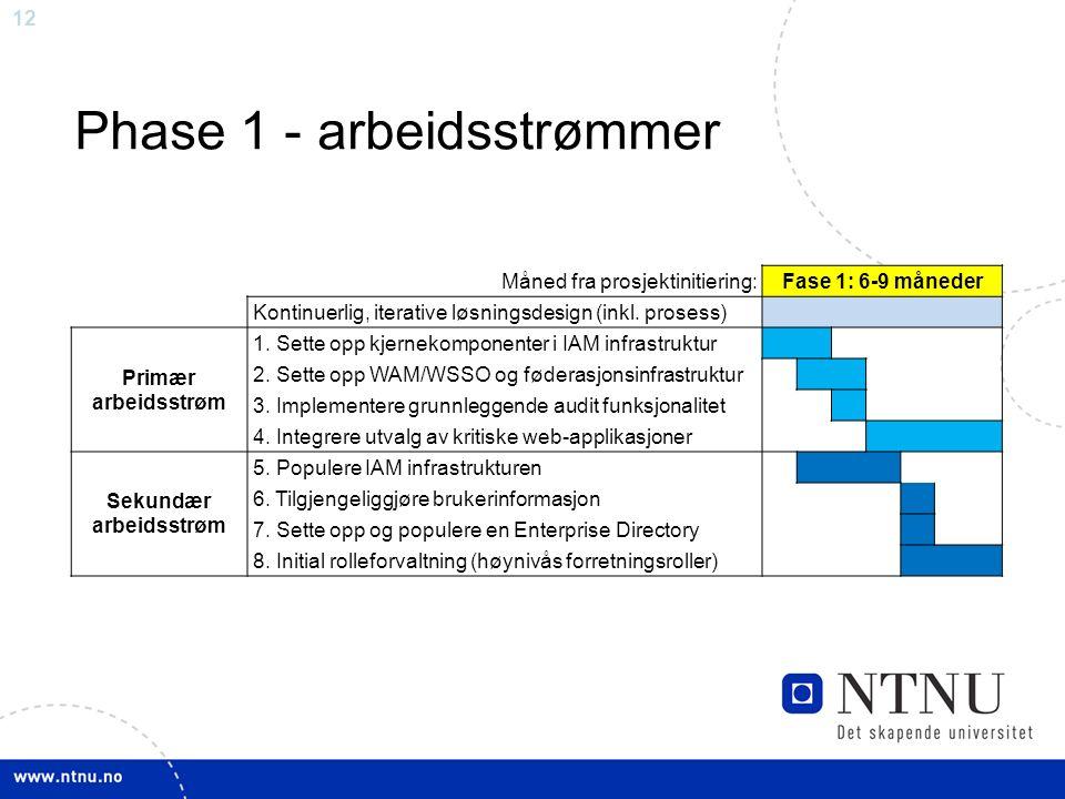 12 Phase 1 - arbeidsstrømmer Måned fra prosjektinitiering:Fase 1: 6-9 måneder Kontinuerlig, iterative løsningsdesign (inkl. prosess) Primær arbeidsstr