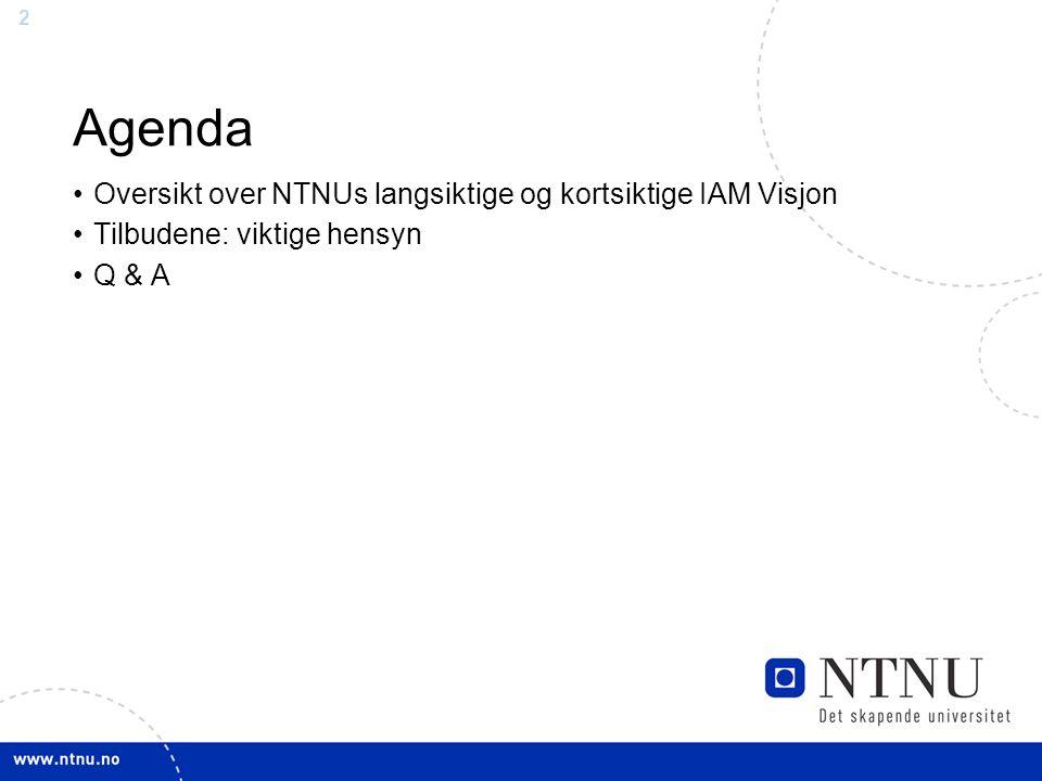 2 Agenda Oversikt over NTNUs langsiktige og kortsiktige IAM Visjon Tilbudene: viktige hensyn Q & A