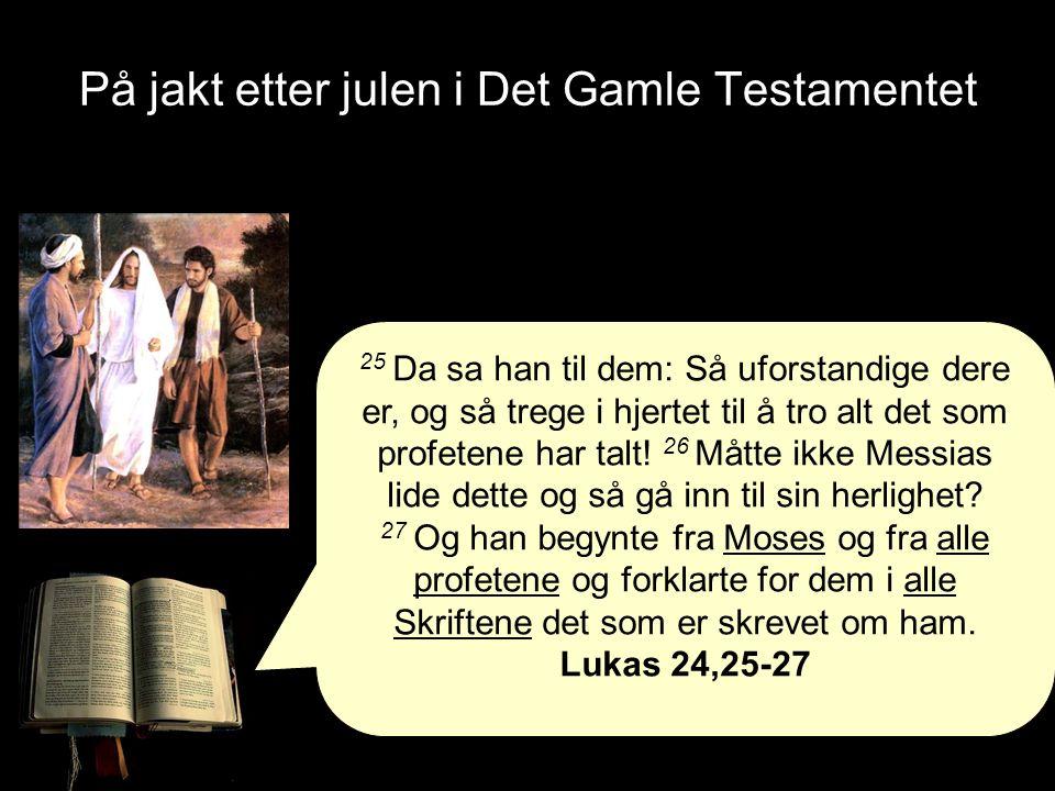 25 Da sa han til dem: Så uforstandige dere er, og så trege i hjertet til å tro alt det som profetene har talt.