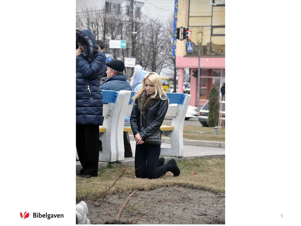 Bibler til Ukraina6