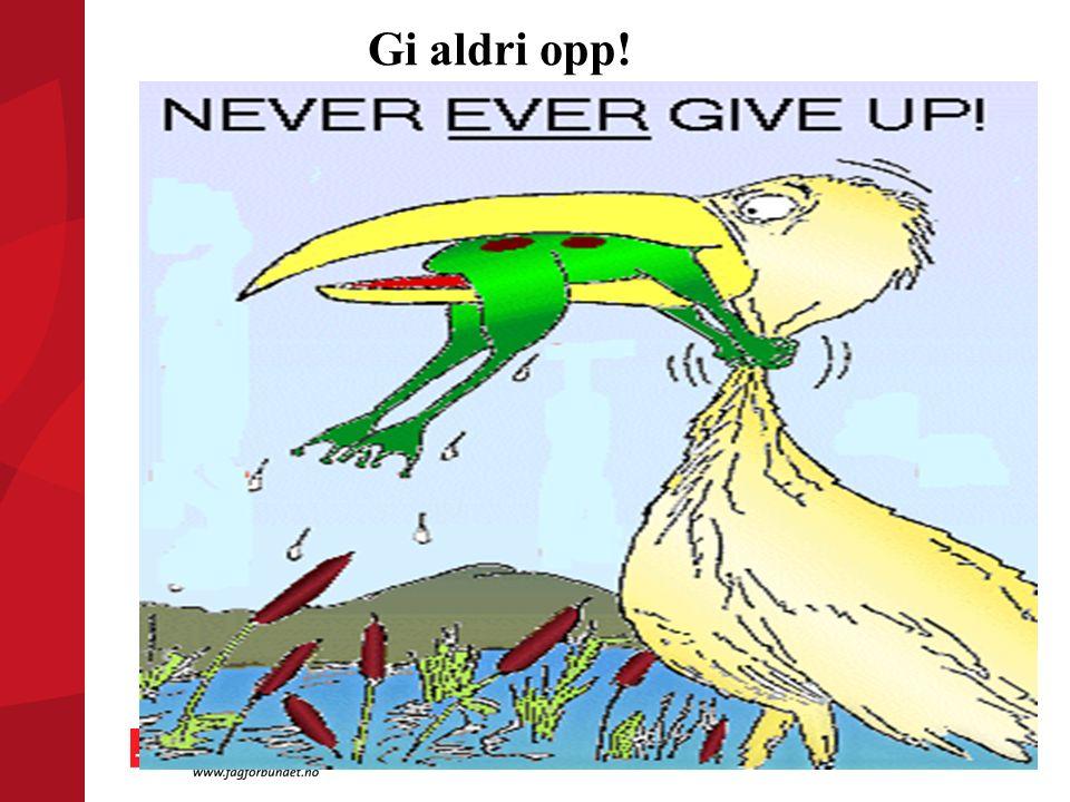Gi aldri opp!