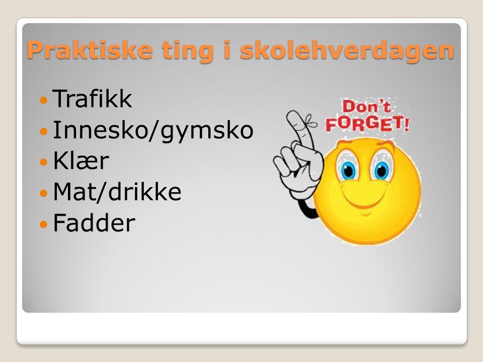 Praktiske ting i skolehverdagen Trafikk Innesko/gymsko Klær Mat/drikke Fadder