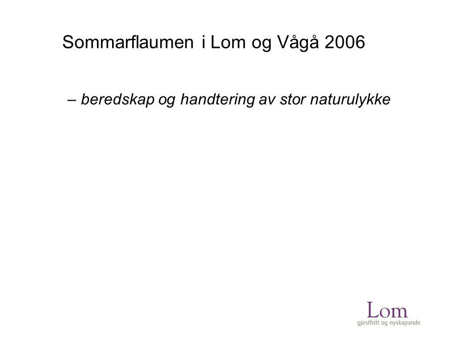 Sommarflaumen i Lom og Vågå 2006 – beredskap og handtering av stor naturulykke