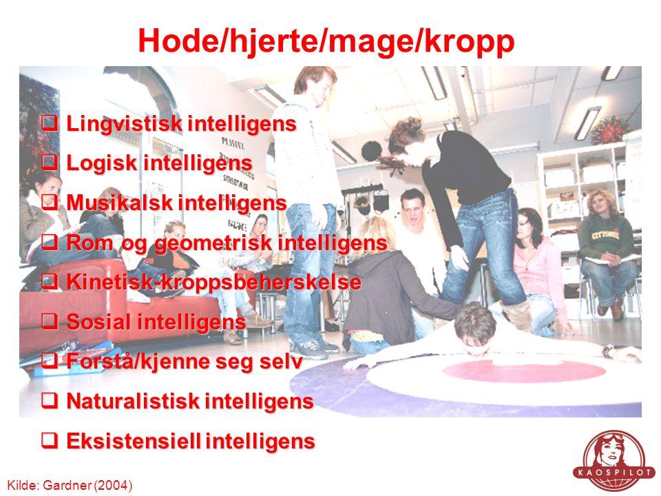 Hode/hjerte/mage/kropp  Lingvistisk intelligens  Logisk intelligens  Musikalsk intelligens  Rom og geometrisk intelligens  Kinetisk-kroppsbeherskelse  Sosial intelligens  Forstå/kjenne seg selv  Naturalistisk intelligens  Eksistensiell intelligens Kilde: Gardner (2004)
