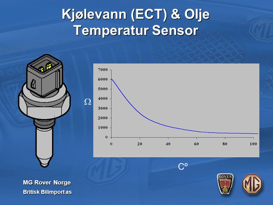 MG Rover Norge Britisk Bilimport as Cº  Kjølevann (ECT) & Olje Temperatur Sensor