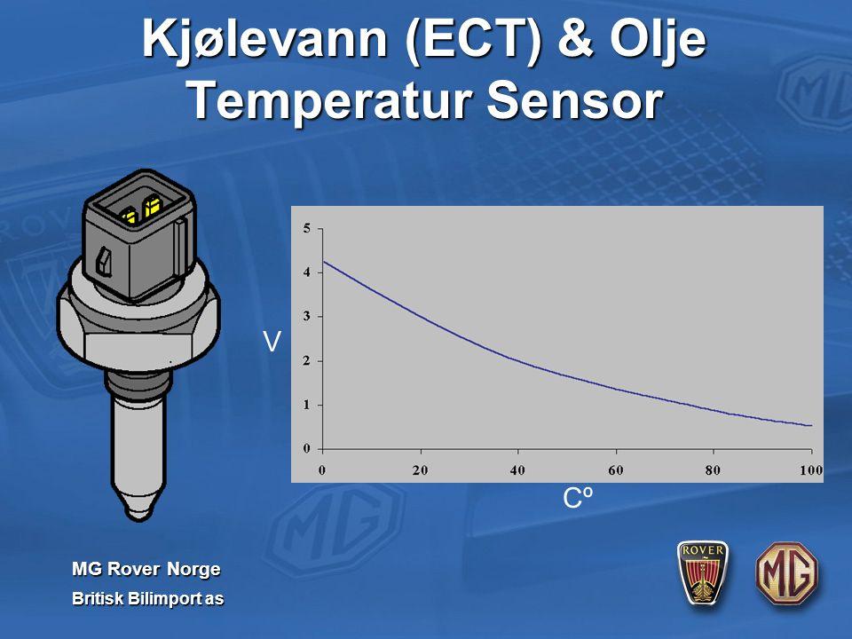 MG Rover Norge Britisk Bilimport as Cº V Kjølevann (ECT) & Olje Temperatur Sensor