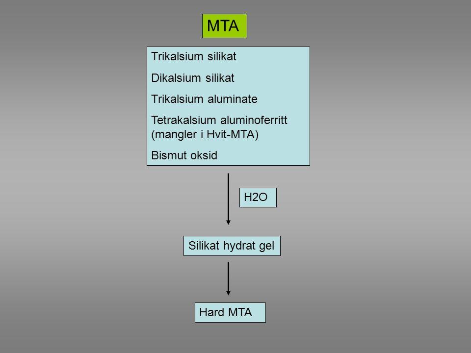 MTA Trikalsium silikat Dikalsium silikat Trikalsium aluminate Tetrakalsium aluminoferritt (mangler i Hvit-MTA) Bismut oksid H2O Silikat hydrat gel Hard MTA