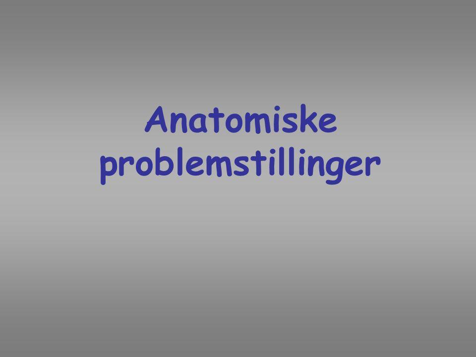 Anatomiske problemstillinger