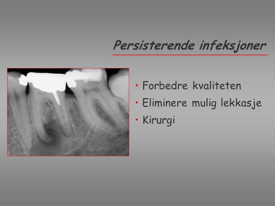 Osteoblasts on Composite Resin