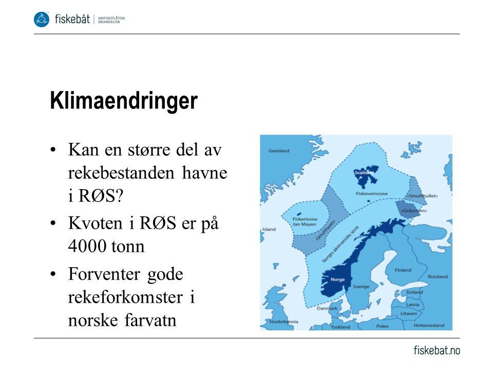Klimaendringer Kan en større del av rekebestanden havne i RØS.