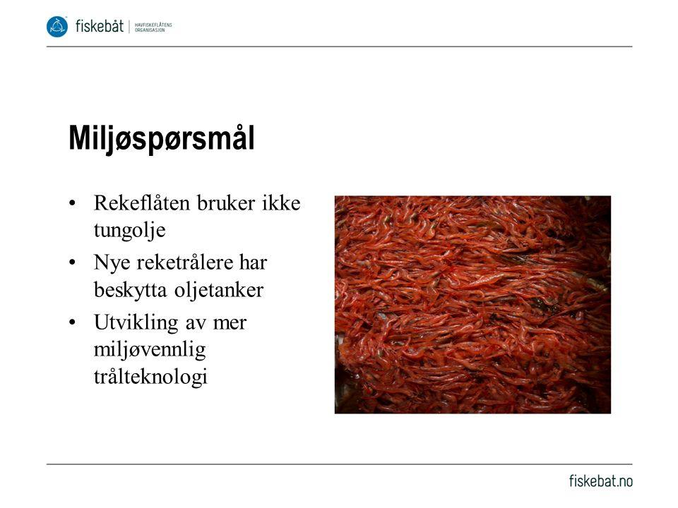 Miljøspørsmål Rekeflåten bruker ikke tungolje Nye reketrålere har beskytta oljetanker Utvikling av mer miljøvennlig trålteknologi