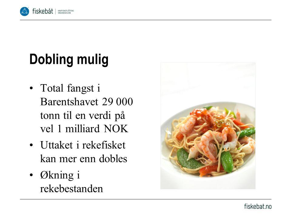 Dobling mulig Total fangst i Barentshavet 29 000 tonn til en verdi på vel 1 milliard NOK Uttaket i rekefisket kan mer enn dobles Økning i rekebestanden