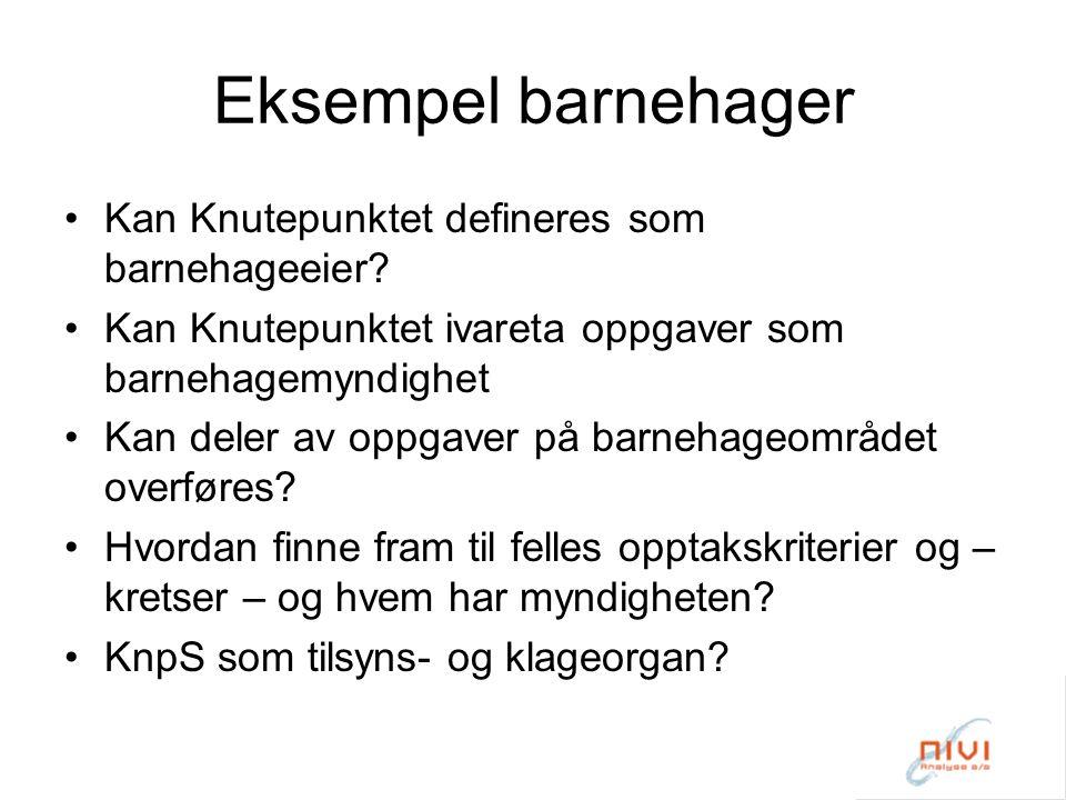 Eksempel barnehager Kan Knutepunktet defineres som barnehageeier.