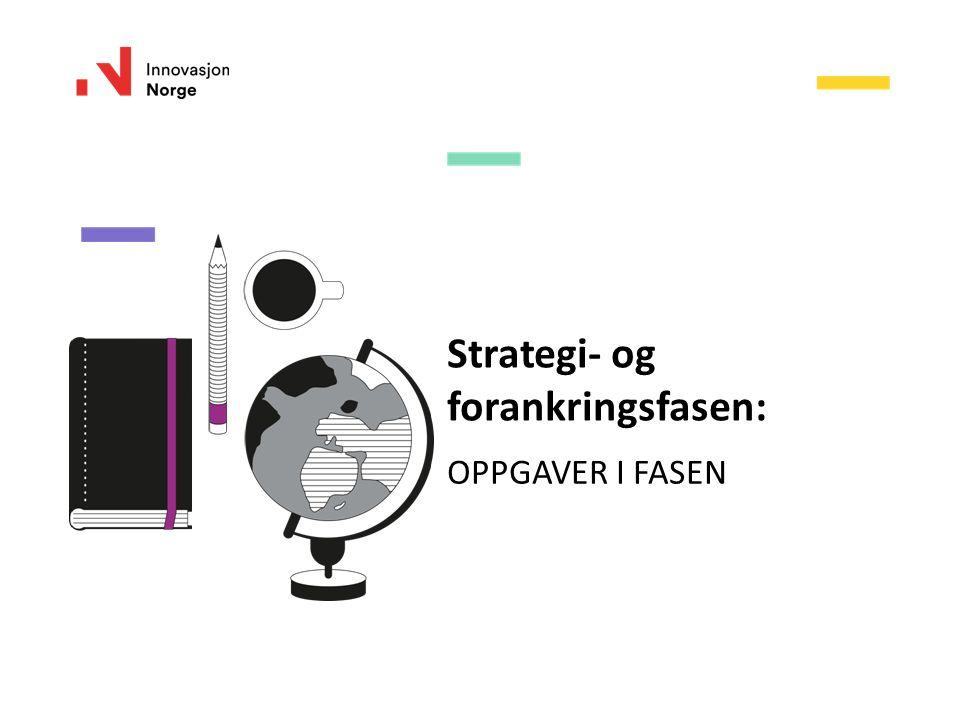 Strategi- og forankringsfasen: OPPGAVER I FASEN