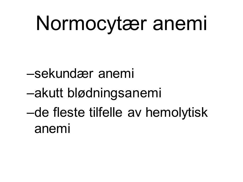 Normocytær anemi –sekundær anemi –akutt blødningsanemi –de fleste tilfelle av hemolytisk anemi