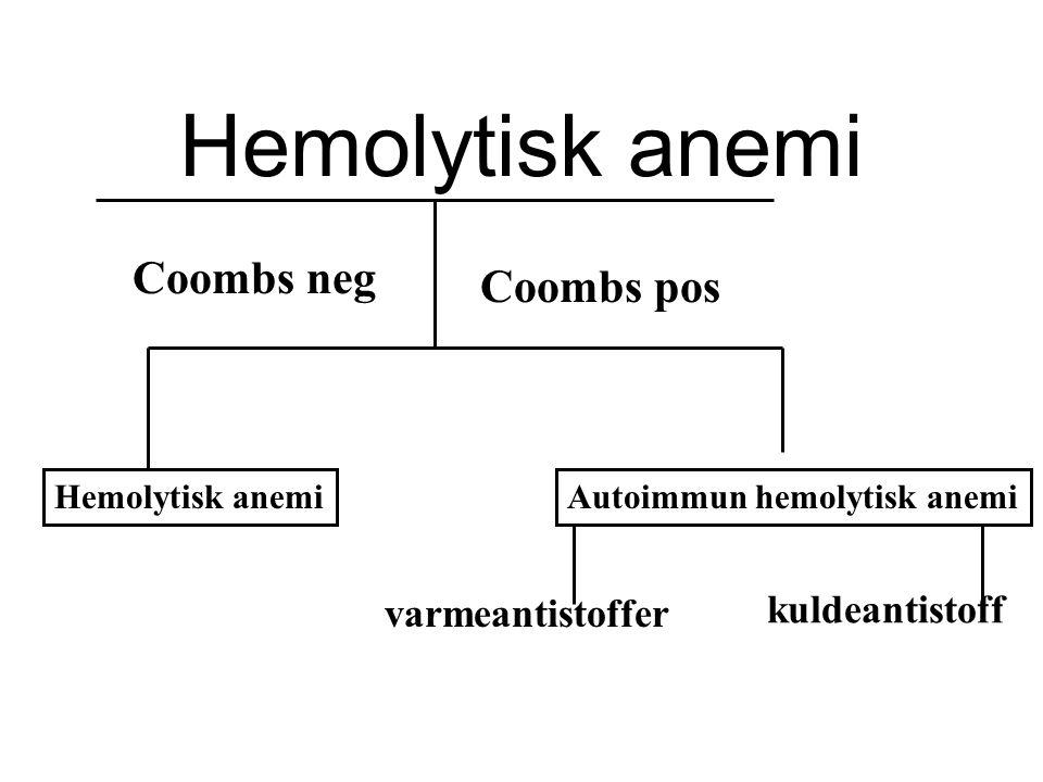 Hemolytisk anemi kuldeantistoff varmeantistoffer Coombs pos Coombs neg Hemolytisk anemiAutoimmun hemolytisk anemi