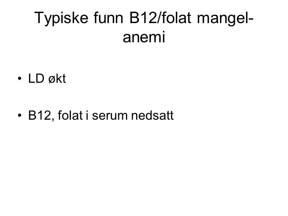 Typiske funn B12/folat mangel- anemi LD økt B12, folat i serum nedsatt
