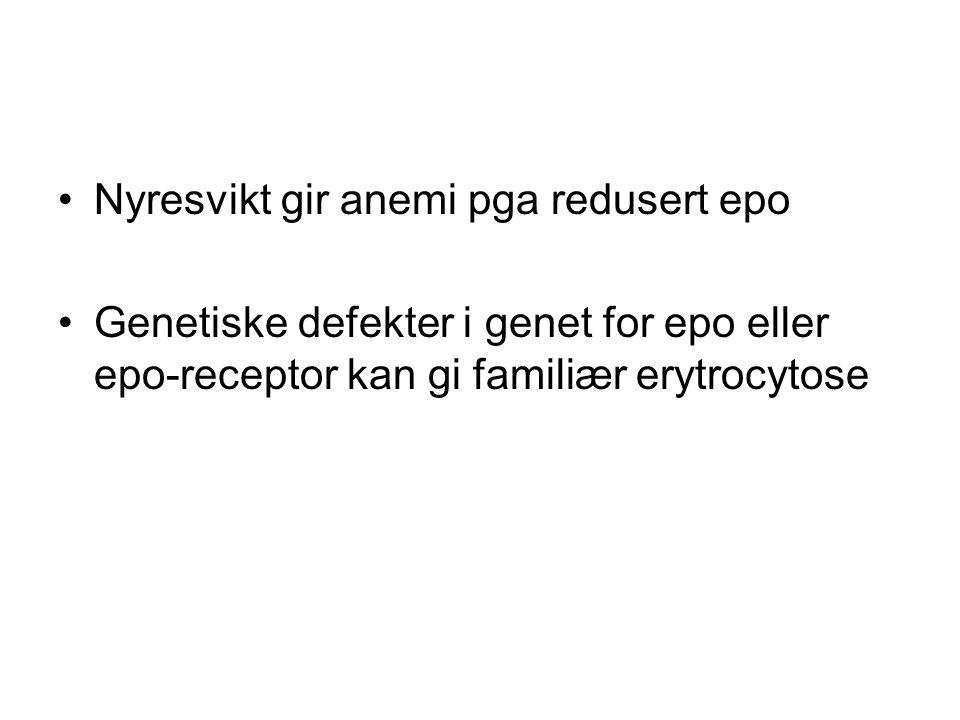 Nyresvikt gir anemi pga redusert epo Genetiske defekter i genet for epo eller epo-receptor kan gi familiær erytrocytose