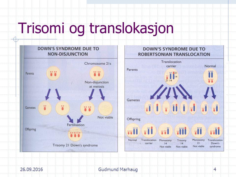 26.09.2016Gudmund Marhaug4 Trisomi og translokasjon
