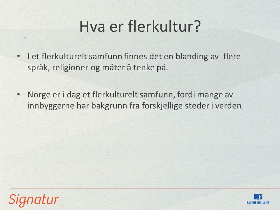 Hva er flerkultur? I et flerkulturelt samfunn finnes det en blanding av flere språk, religioner og måter å tenke på. Norge er i dag et flerkulturelt s